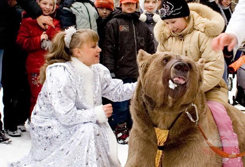 Дрессированный медведь на масленицу