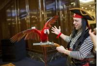 Попугаи на встречу гостей